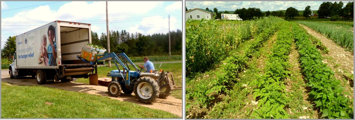 FBST Healthy Harvest Program